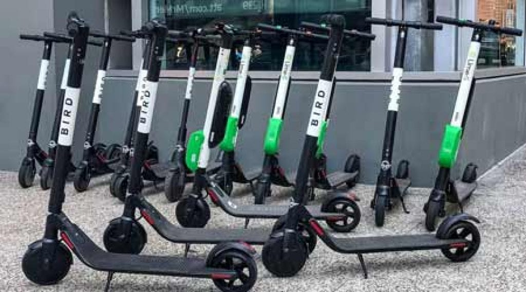 flock of bird scooters share